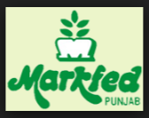 MARKFED Notification 2016 Apply Now